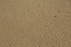 Песок пляжа точного зерна от пляжа Стоковые Изображения
