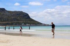 Песок пляжа Hoek рыб стоковое изображение rf