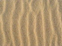 песок предпосылки близкий вверх развевает Стоковая Фотография RF
