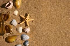Песок предпосылки темы лета чистый с seashells и морскими звёздами солнечных очков Стоковая Фотография RF
