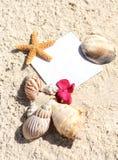 песок пустой бумаги пляжа обстреливает лето starfish Стоковое фото RF