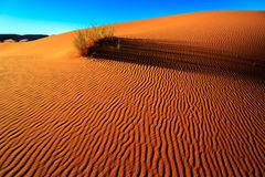 Песок пустыни Сахары Стоковое Изображение