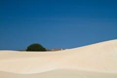 песок пустыни ii Стоковая Фотография RF