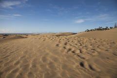 песок пульсаций картины дюн крупного плана красный Стоковые Фотографии RF