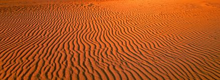 песок пульсаций картины дюн крупного плана красный Стоковое фото RF