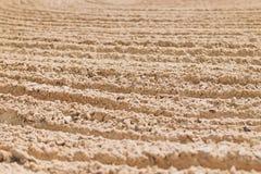 песок пляжа влажный Стоковое фото RF