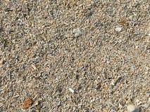 Песок пляжа в Окинаве Стоковые Изображения