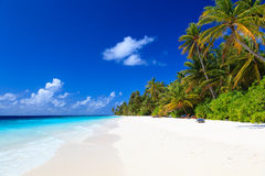 песок пляжа тропический Стоковое фото RF