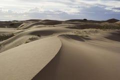 песок России kurshskaya kosa горизонта дюн шагает протягивающ к пустыня gobi Монголия Стоковое Изображение RF