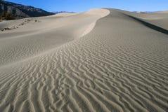 песок России kurshskaya kosa горизонта дюн шагает протягивающ к Стоковые Фотографии RF