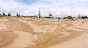 песок России kurshskaya kosa горизонта дюн шагает протягивающ к Стоковая Фотография
