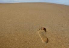 песок следа ноги Стоковая Фотография RF
