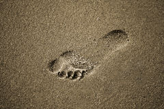 песок следа ноги Стоковое фото RF
