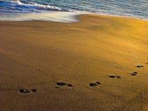 песок следов ноги пляжа Стоковое Изображение RF