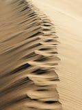 песок следов ноги Стоковая Фотография