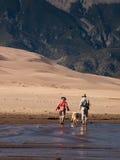 песок дюн большой Стоковое фото RF