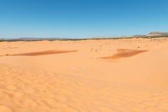 песок дюн коралла розовый Стоковые Изображения
