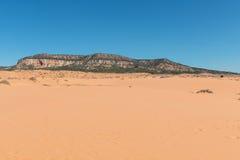 песок дюн коралла розовый Стоковое фото RF