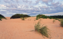 песок дюн пляжа банков наружный Стоковые Фото