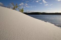 песок 3 следов ноги Стоковое Изображение RF