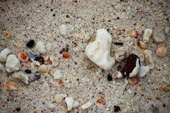 песок galapagos Стоковое фото RF