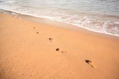 песок goa следов ноги стоковое изображение