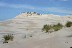 песок leba дюн стоковое изображение rf