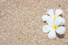 песок leelawadee Стоковое фото RF