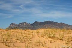песок mojave kelso дюн пустыни california Стоковое Фото