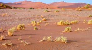 песок namibian дюн Стоковая Фотография RF