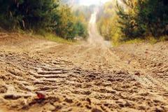 Песочная дорога в лесе осени идя за горизонтом стоковое фото