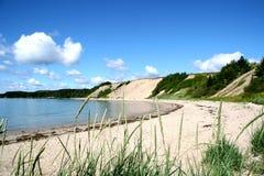песочное newfoundl пляжа сельское стоковые фотографии rf