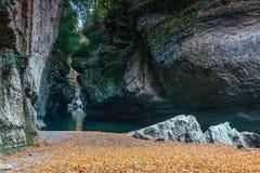 песочный берег реки горы посыпанного с желтыми листьями Стоковые Изображения RF
