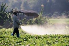 Пестицид хуторянина распыляя на поле стоковые изображения rf