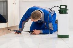 Пестицид мужского работника распыляя на шкафе Стоковые Фотографии RF