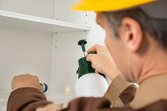 Пестициды работника службы борьбы с грызунами и паразитами распыляя Стоковое фото RF