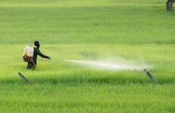 пестицид стоковое изображение rf