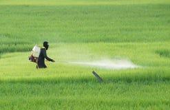 пестицид стоковые изображения