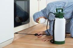 Пестицид Exterminator распыляя на деревянном шкафе стоковые изображения