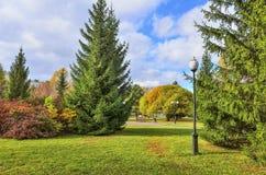 Пестротканая листва деревьев и кусты в городе осени паркуют стоковая фотография rf