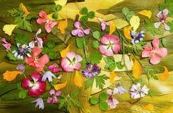 Пестротканая расчистка applique высушенных отжатых цветков стоковое фото rf