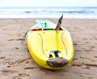 Пестротканое каное на пляже Стоковые Изображения