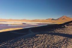 Пестротканое озеро сол с фламинго на боливийских Андах Стоковое фото RF