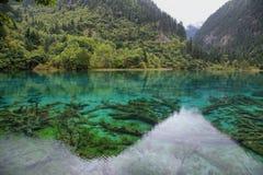 Пестротканое озеро i в Jiuzhaigou, Китае, Азии стоковое изображение rf