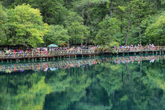 Пестротканое озеро i в Jiuzhaigou, Китае, Азии стоковые изображения rf