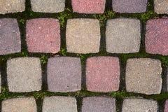 Пестротканые вымощая камни с травой на верхней части Стоковое Изображение