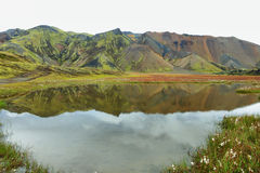 Пестротканые горы на Landmannalaugar стоковое изображение rf
