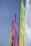 Пестротканые знамена Стоковое Фото