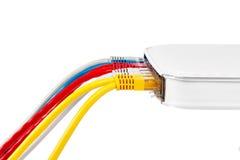 Пестротканые кабели сети соединились к маршрутизатору на белой предпосылке Стоковая Фотография