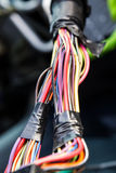 Пестротканые провода связанные тесьмой совместно Стоковое фото RF